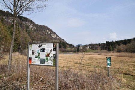 Fennberg und Fennberger See von Margreid
