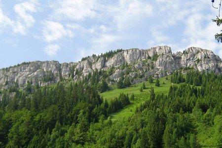 Brünnsteinhaus (1360 m) vom Waldparkplatz