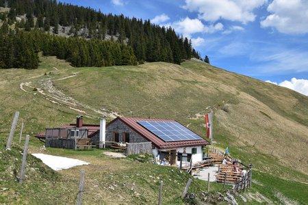 Altkaser Alm (1279 m) von Erl
