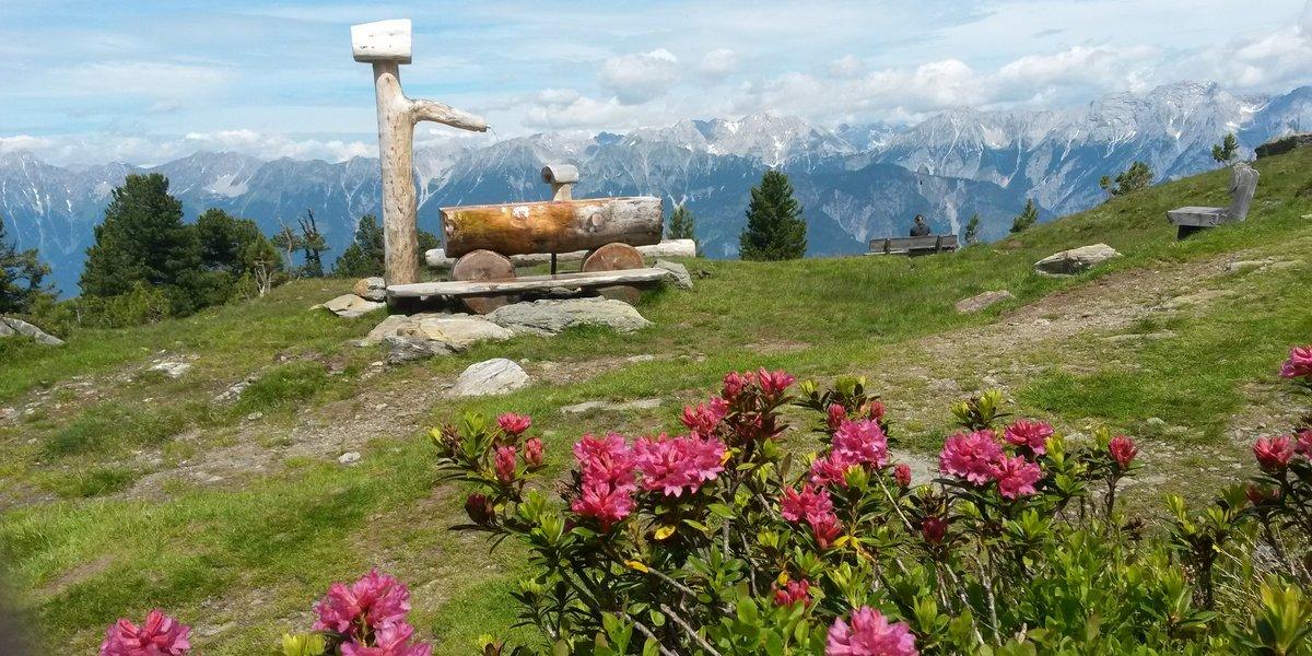 Der Zirbenweg in den Tuxer Alpen, Glungzer (c) Hall-Wattens-Tourismus