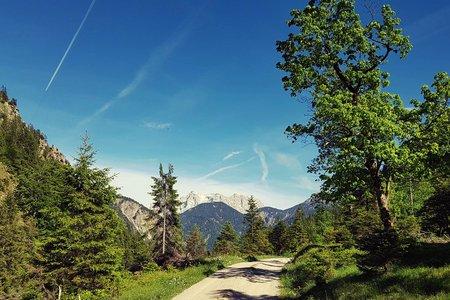 Melkalpe – Kuhklause – Plansee Runde von Breitenwang