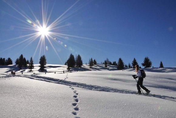 Schneeschuhtouren in den Ostalpen