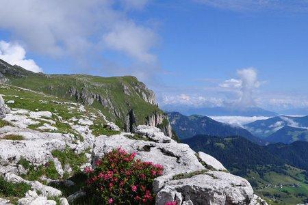 Col Plö Alt (2366 m) von der Gardenacia-Hütte