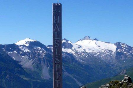 Halslspitze (2574 m) von der Weidener Hütte