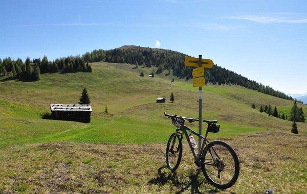Mountainbiken bei Kartitsch