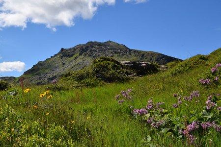 Loaser 3-Gipfel-Rundtour