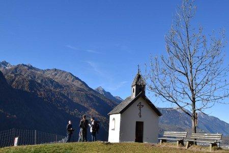 Busreisen in die Alpen werden in Zeiten des Klimawandels immer beliebter