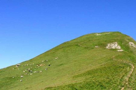 Anhalter Hütte (2038 m) vom Hahntennjoch