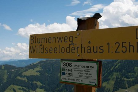 Blumenweg Hochhörndlhütte