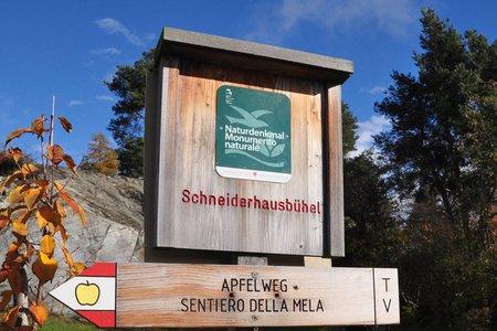 Apfelweg in Natz – Schabs mit Ölberg