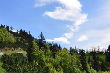Fritzens - Gnadenwald - Hinterhorn Alm