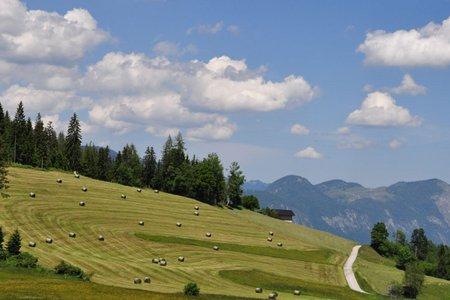 Rattenberg – Alpbachtal – Bischofer Alm – Holzalm