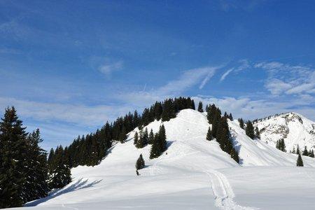 Karkopf (1507 m) von Kössen