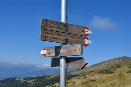 Rossalm (Halslhütte), 2.200 m