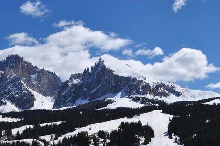 Plattkofel (2958 m) von Saltria