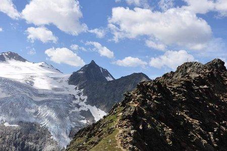Großer Trögler (2902 m) über die Sulzenauhütte