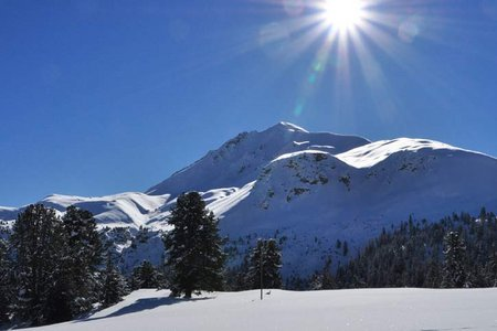 Piz Daint (2968 m) vom Gasthof Buffalora