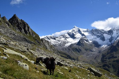 Lausitzer Höhenweg – 1 Tagestour