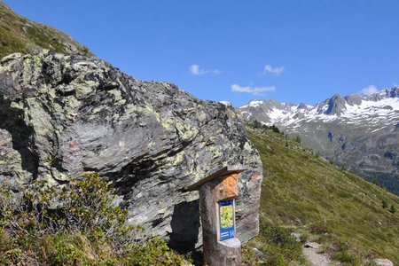Alpenblumenweg Oberseit