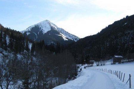 Brixenbachalm - Naturrodelbahn
