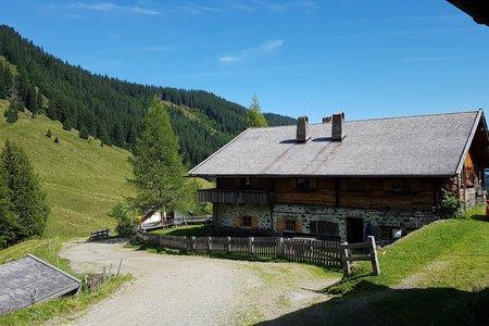 Kaunzalm von Strass im Zillertal