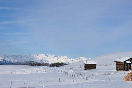 Hochmoor - Rundwanderung von der Starkenfeldhütte