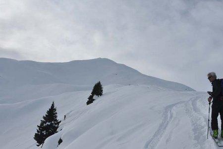 Bodnerberg - Pfaffenberg (2074/2372 m) über die Allrissalm