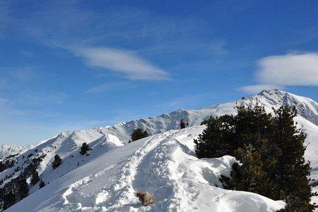 Faltegartenköpfl (2184 m) von Marlstein