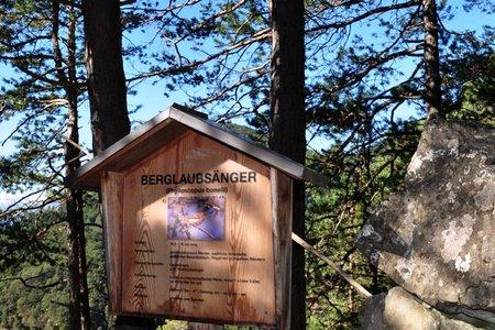 Zirler Vogellehrweg mit Höhenpromenade