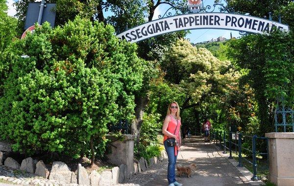 Unterwegs auf der Tappeiner Promenade