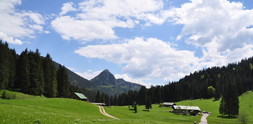 Image result for schwarzentennalm