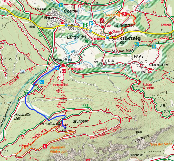 Grünberg (1497m) von der Grünberg-Alm